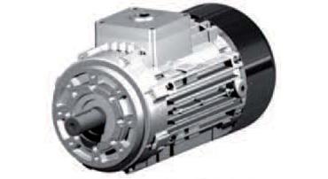 Motoare electrice Anti EX - EEX